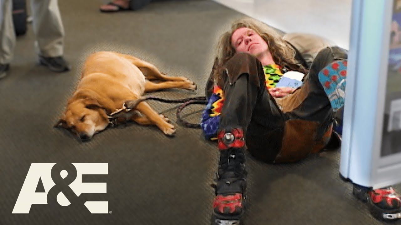 Drunk Man & Support Dog Denied Boarding, Claims He's Fine   Airline   A&E