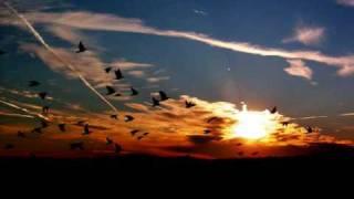 TECHNO TRANCE - AIRWAVE (CHILL MIX)