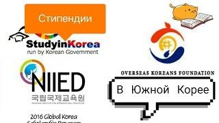 Как БЕСПЛАТНО учиться в Южной Корее | Мой опыт (не влог)
