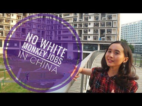 """Chinese"" Local English teachers are taking over ! - Shenzhen University @university @China"