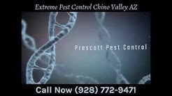 Extreme Pest Control Chino Valley AZ