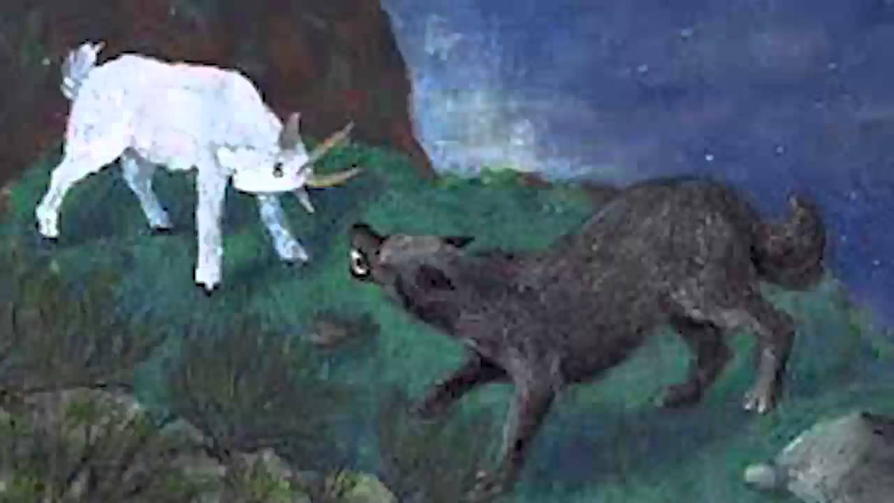 la chèvre de monsieur seguin dessin animé