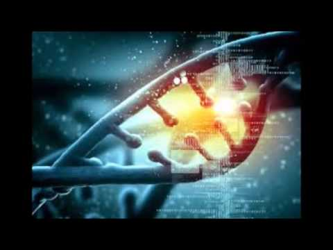 The Arcturians, Activating Human Evolution