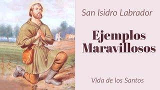 Ejemplos Maravillosos San Isidro Labrador