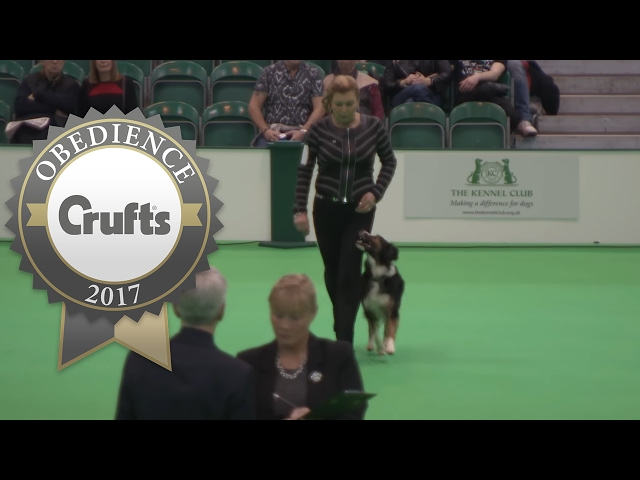 Obedience Championship - Bitches - Part 6 | Crufts 2017