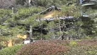 大磯邸園めぐりスタンプラリー ~旧吉田茂邸庭園と大磯邸園めぐり~ 200...