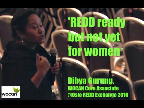 Dibya Gurung's  intervention  at Oslo REDD Exchange 2012