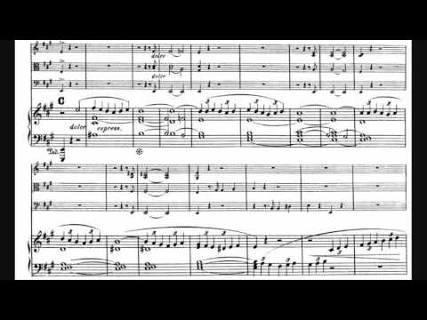 Hendrik Witte - Piano Quartet in A major, Op. 5