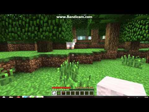 Efe'yle Minecraft oynuyoruz survival bölüm 1