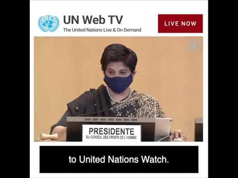 """Hamas Commits Double War Crimes"" — UN Watch testimony"