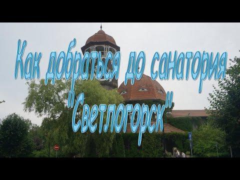 Как добраться из москвы до светлогорска калининградской области