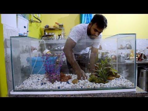 Aquarium : first time setup