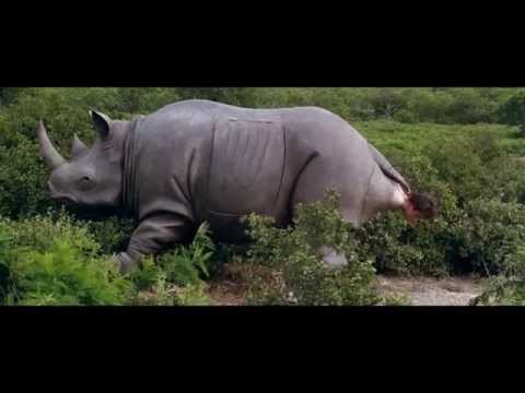ace ventura when nature calls rhino scene