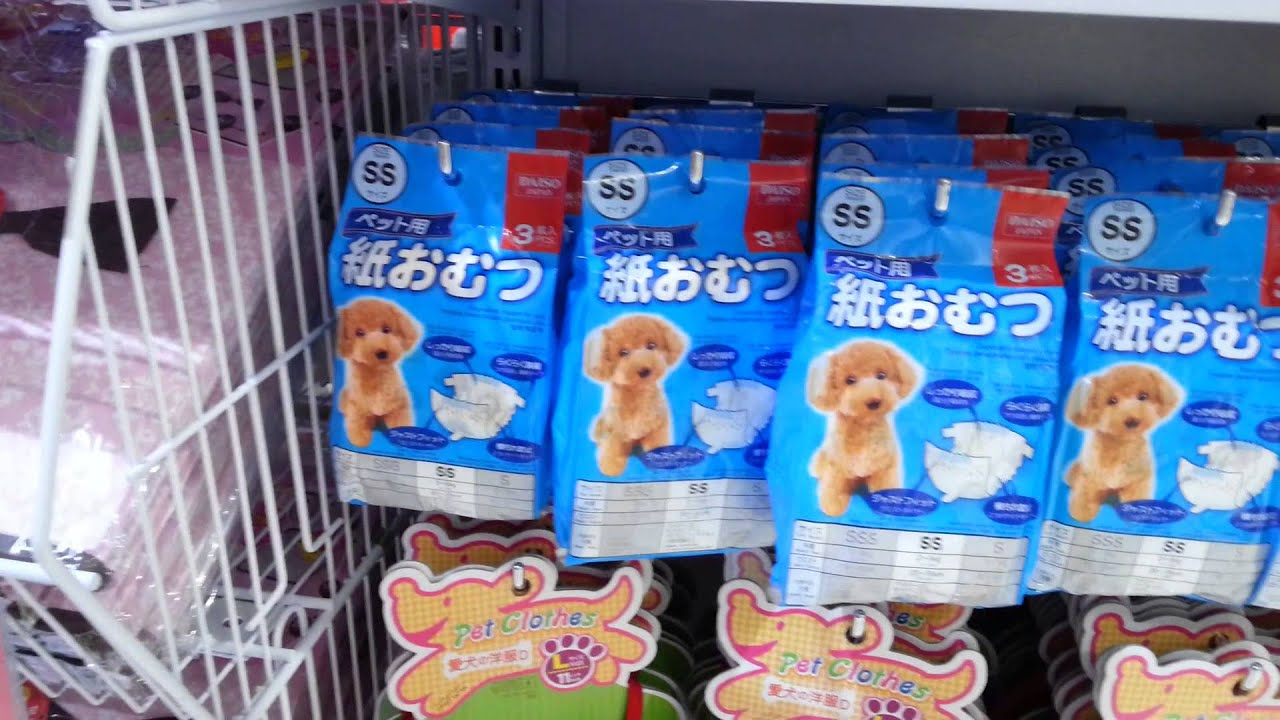 Pet clothes at Daiso Japan Shop Dubai Mall - YouTube
