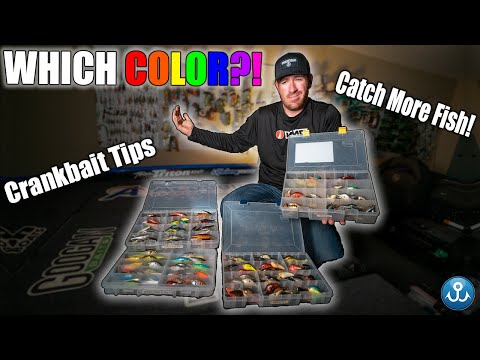Fishing Hacks: The BEST Crankbait Colors (EXPLAINED)