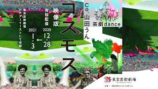 Co.山田うん 新作「コスモス」映像版  トレーラー
