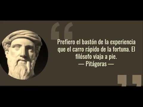 Platon Seneca Aristoteles Las Mejores Frases De Los Filosofos Griegos