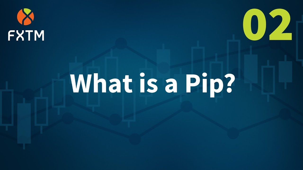 What does pip stand for in forex