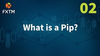 02 What Is Pip - FXTM Learn Forex in 60 Seconds