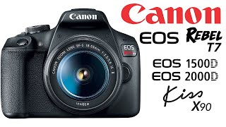 7 PHOTOGRAPHY TIPS FOR BEGINNERS - Canon EOS Rebel T7 / EOS 1500D