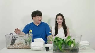 ★요고어때 유튜브 리뷰★ 아쿠아팟 수경재배공기정화어항