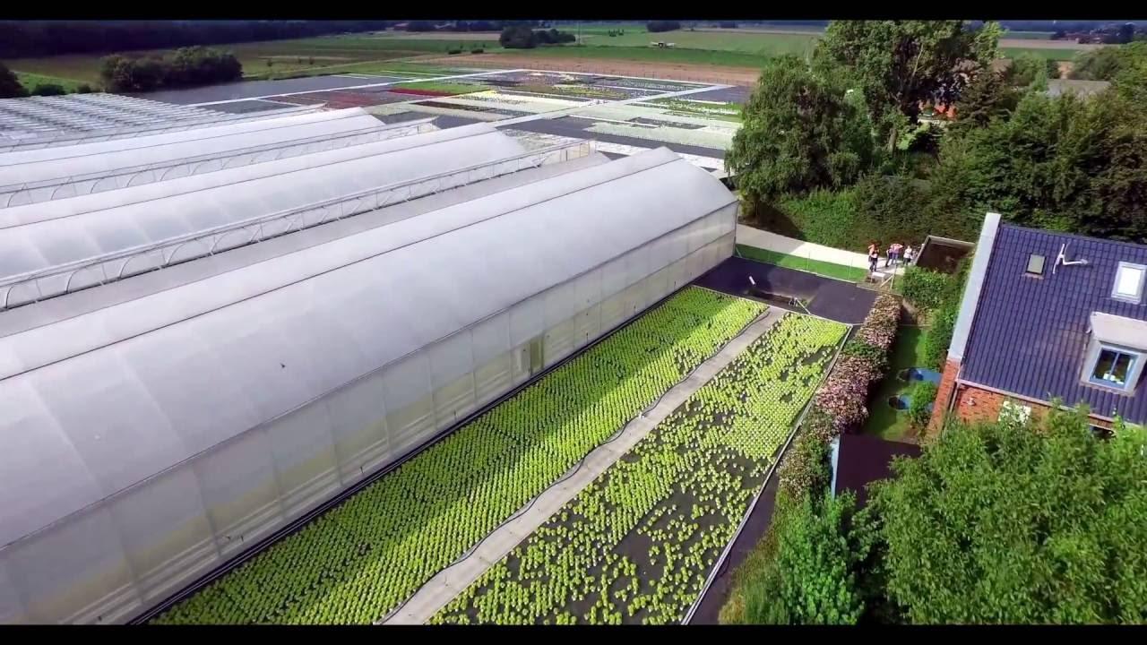 Gartenbau Hörnes Youtube