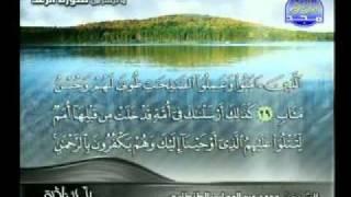 نادرالشيخ محمد عبدالوهاب الطنطاوي آيات من سورة الرعد