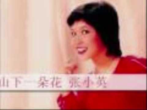 Zhang Xiao Ying (in Indonesian) -  Xiang Jian Bu Ru Huai Nian - 张小英 - 相见不如怀念