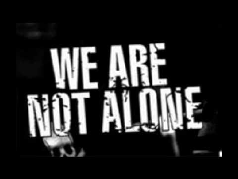 We are not alone essay