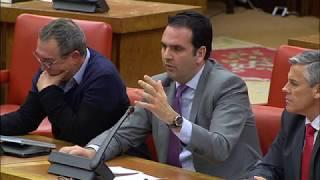 Defensa de Fueros ante los padres de la Constitución Española Íñigo Alli