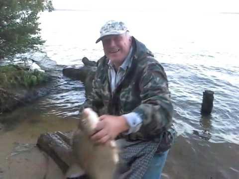 телевизор для рыбалки цена