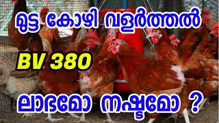 BV 380 Mutta Kozi valarthal [ECO OWN MEDIA] Malayalam (Jose & Sunny)😀