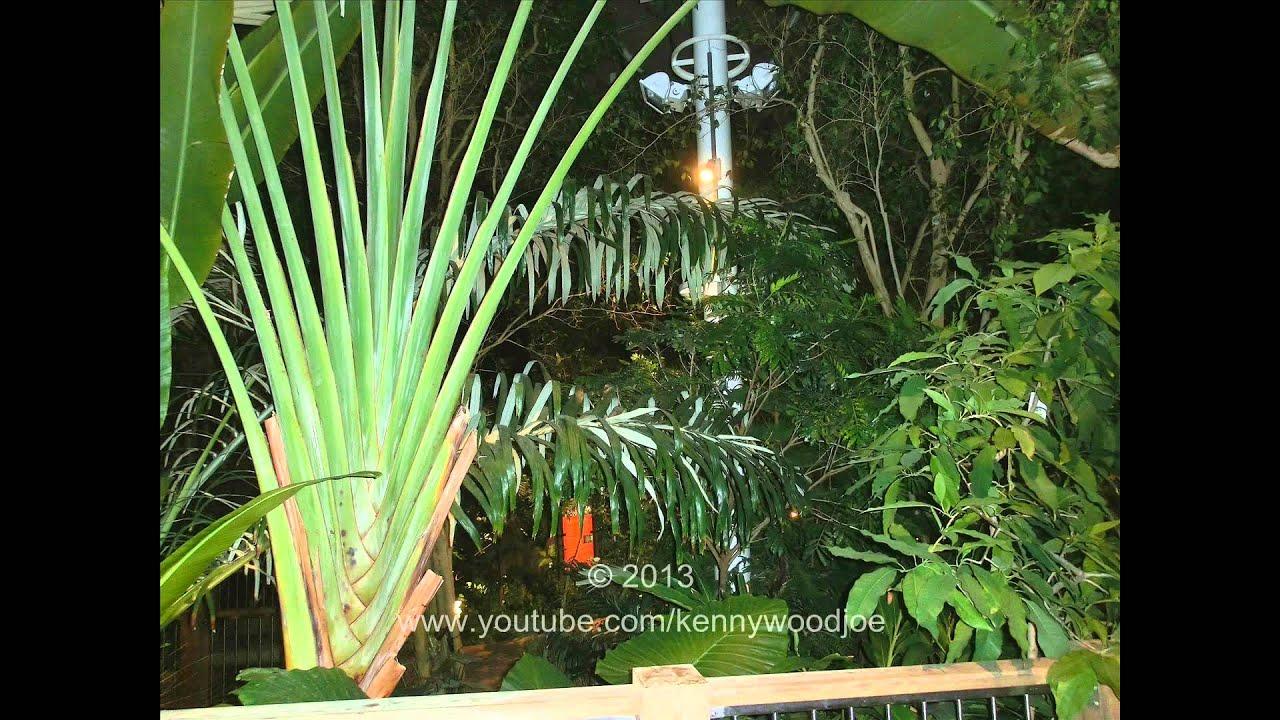 Phipps Conservatory U0026 Botanical Gardens   Pittsburgh, PA