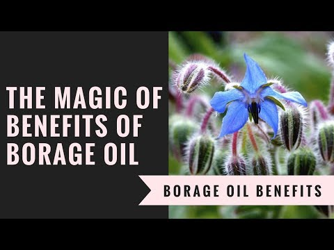 The Magic Of Benefits Of Borage Oil