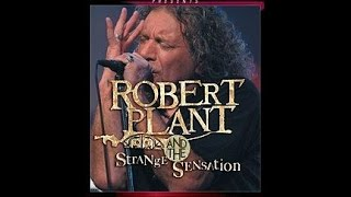 Watch Robert Plant Freedom Fries video