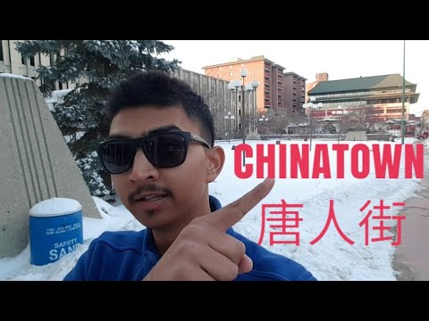 Chinatown In Winnipeg | Indian Boy In Canada | VLOG