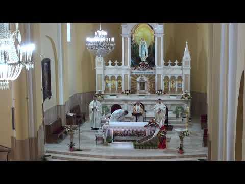 Sf. Liturghie solemnă de Paști din 12 aprilie 2020 în Parohia Hălăucești
