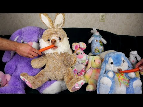 Stuffed Bunnies Come to Life: Funny Dogs Maymo & Penny