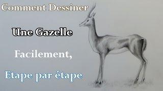 Comment dessiner une gazelle facilement, How to draw a gazelle