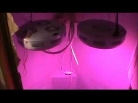 90watt UFO LED Grow Light review