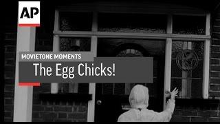 Egg Chicks! | Movietone Moment | 9 Oct 15