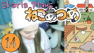 sharla plays nekoatsume japanese cat collecting game vlogmas in japan day 14
