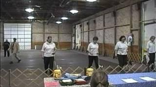 Foxy Russells Team Obedience Montgomery Terrier Trial 2006.vsp