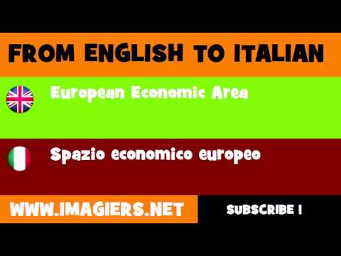 FROM ENGLISH TO ITALIAN = European Economic Area