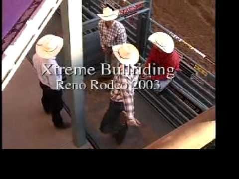 Extreme Bull Riding - Reno Gazette Journal