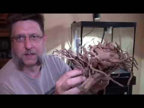 Spider Wood For The Aquarium
