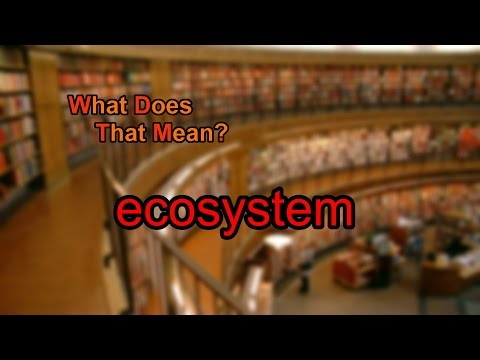 What does ecosystem mean?