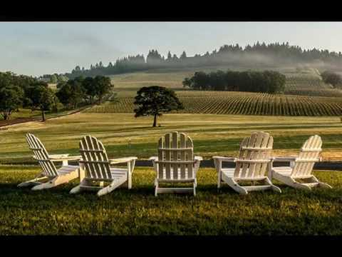 wine tasting tour dundee oregon