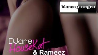 DJane HouseKat & Rameez - Ass Up (Official Audio)