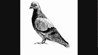 How to draw a pigeon - Things to Draw